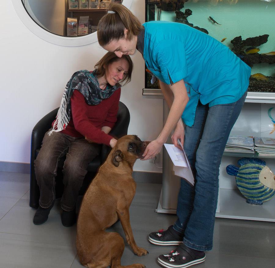 Clinique Vétérinaire de Nantes