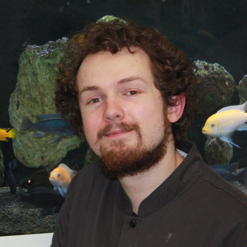 Docteur Florian CARREZ de la Clinique Vétérinaire de l'Arche à Nantes