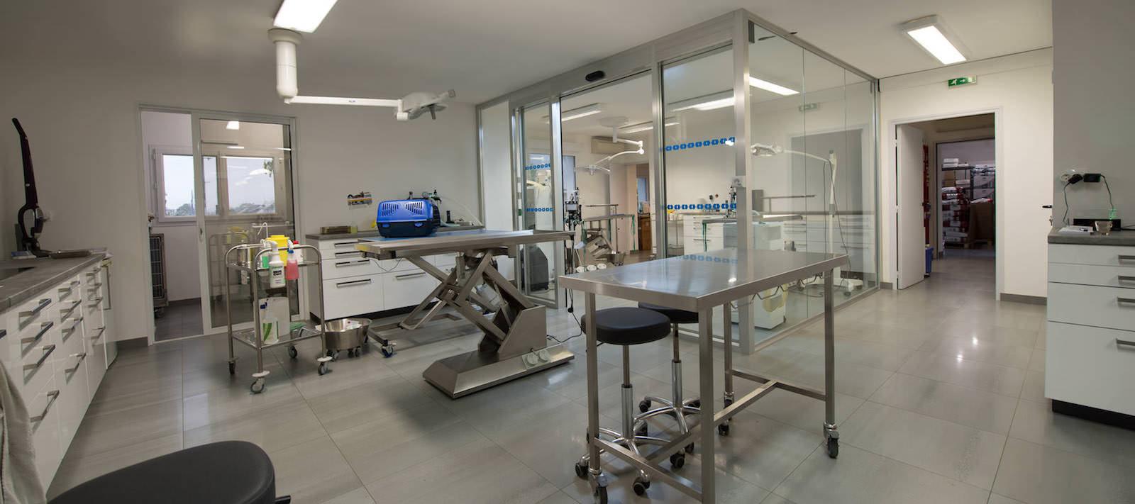 Clinique Vétérinaire à Nantes